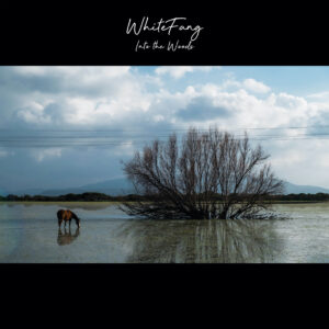 White Fang – Into the Woods